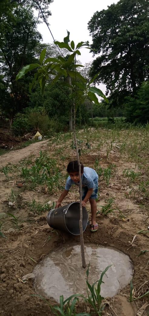 वृक्ष हमारे जीवन दाता, इनसे जनम, जनम का नाता:आई युवा